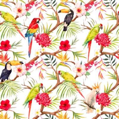 Toucan Print Curtain Fabric