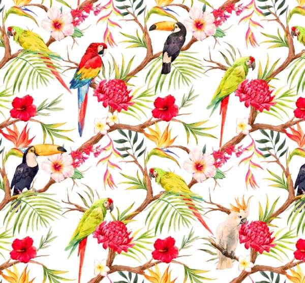 Toucan Print Curtain Fabric